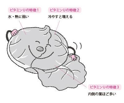 粘膜 を 強く 食べ物 する の 胃