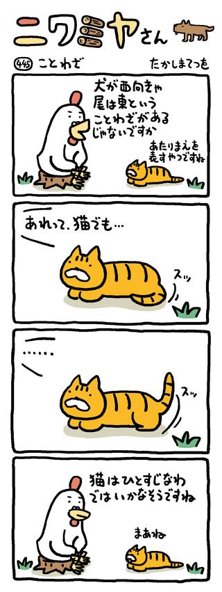 猫 ことわざ