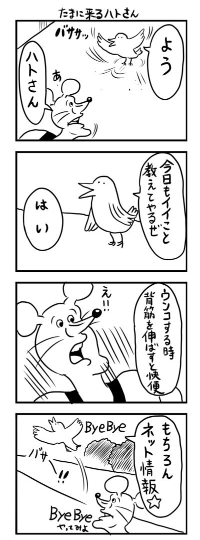 漫画 ハト